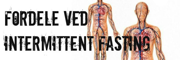 Fordele ved Intermittent Fasting